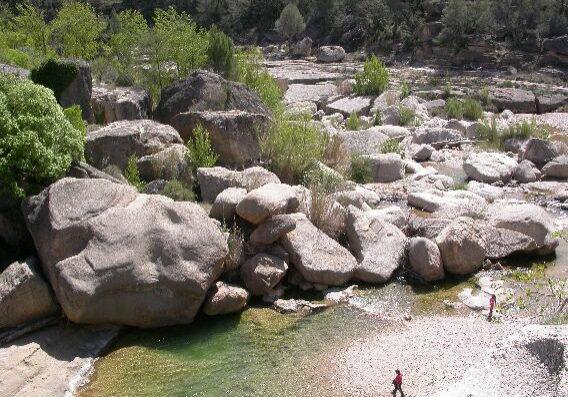 riu 2